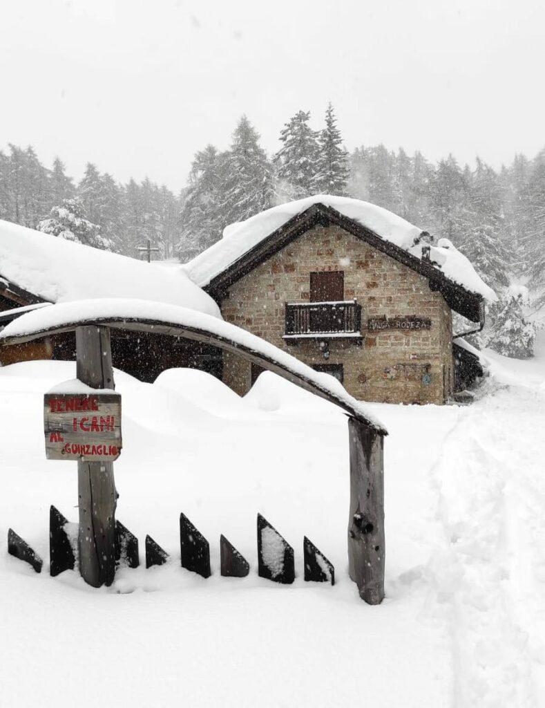 malga rodeza neve